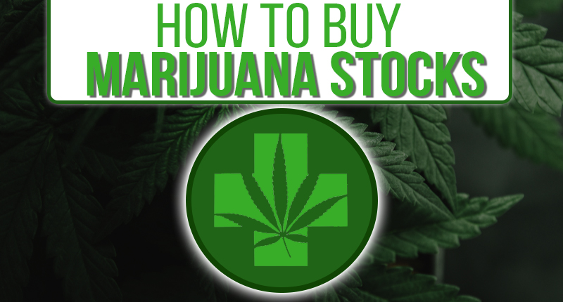 how to buy marijuana stocks