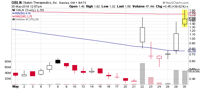 OBLN Stock Chart
