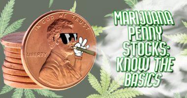 marijuana penny stocks to buy