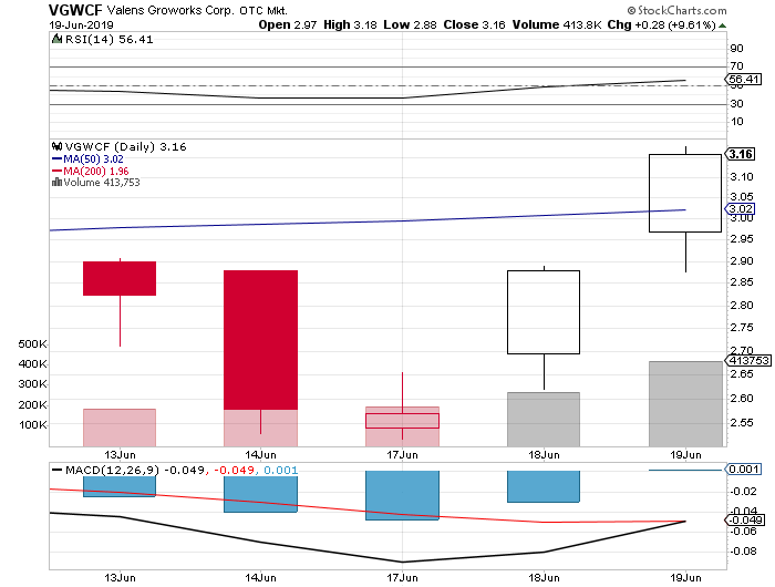 marijuana penny stock VGWCF VGW stock