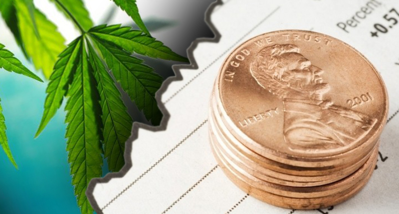 5 Marijuana Penny Stocks To Watch | PennyStocks com