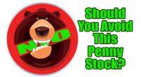 nio penny stock avoid