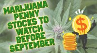 marijuana stocks to watch august