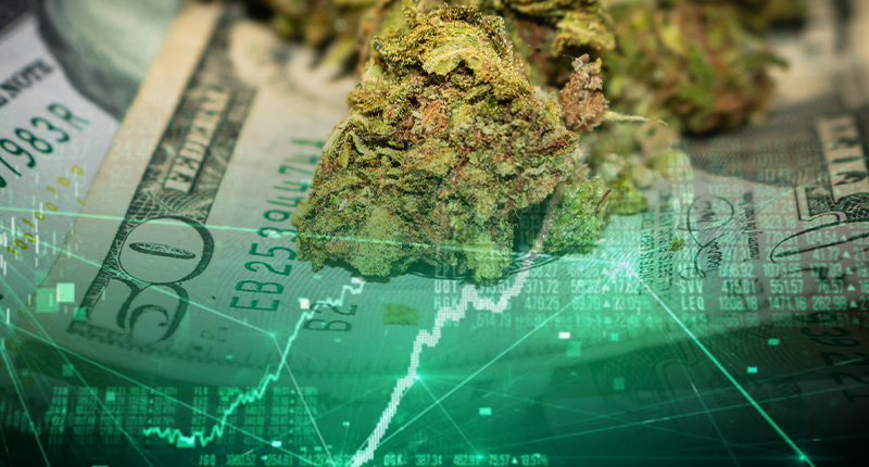 pot penny stocks to watch