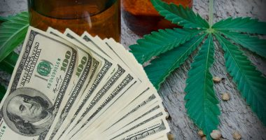 marijuana penny stocks to buy september