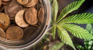 pot penny stocks to buy 2019