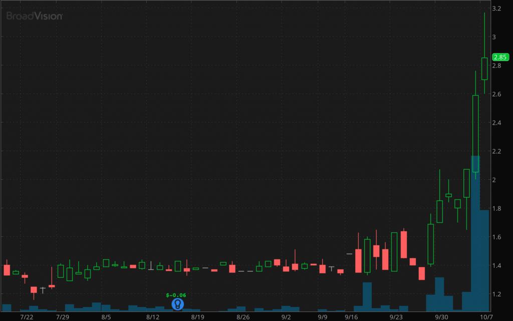 penny stocks new highs Broadvision Inc. (BVSN)