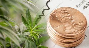 penny stocks to buy pot stocks 2019