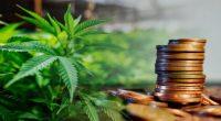 penny stocks to watch marijuana stocks today