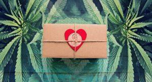 marijuana penny stocks valentines day