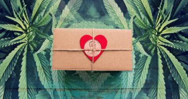 marijuana penny stocks valentines day