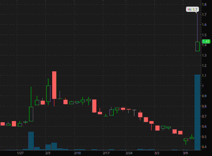 penny stocks to buy BIO-key International (BKYI)
