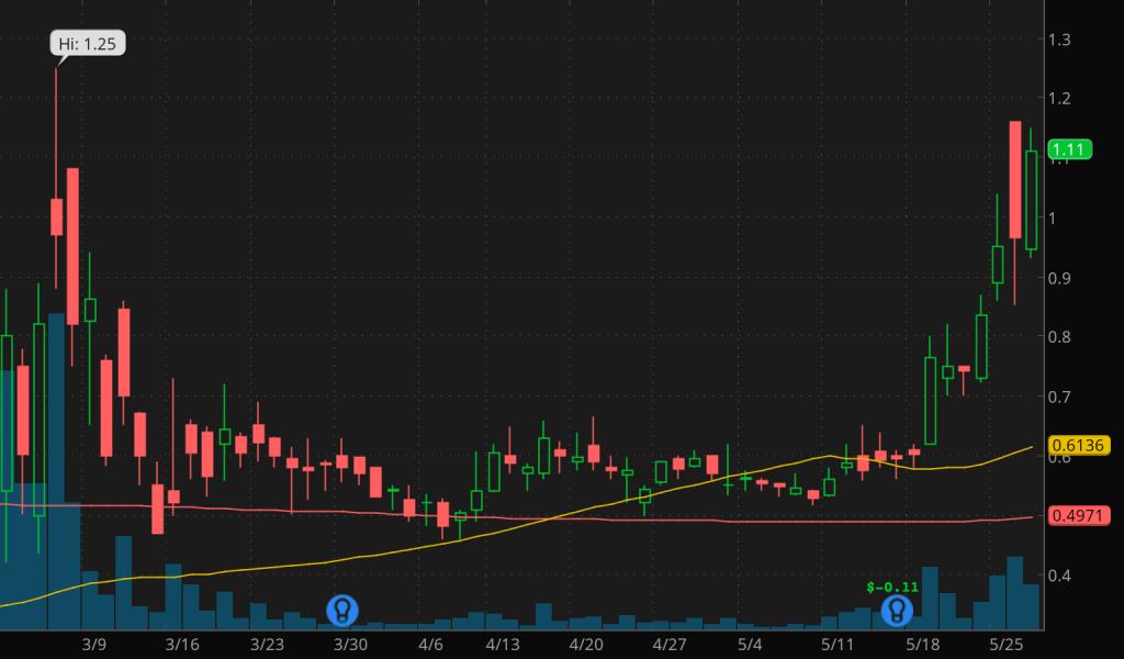 best penny stocks to buy sell Heat Biologics (HTBX Stock Chart)