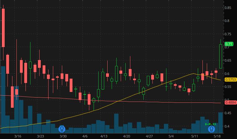 penny stocks to buy sell Heat Biologics  (HTBX stock)