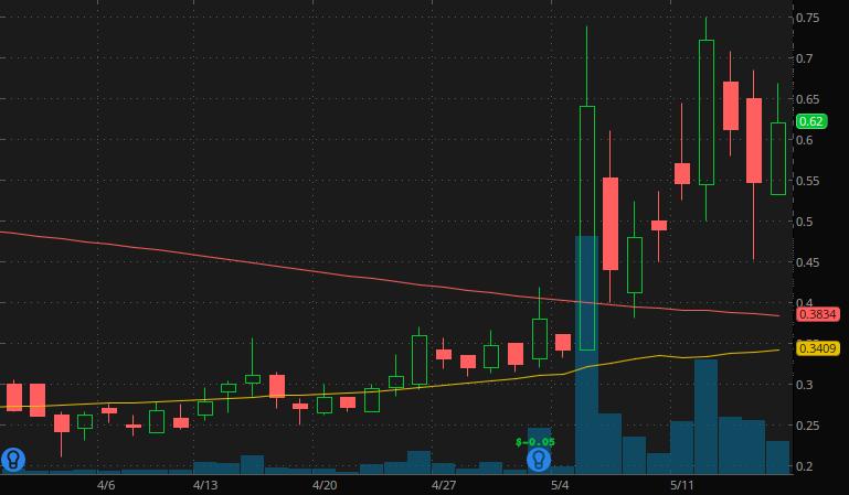 penny stocks under $1 Ritter Pharmaceuticals (RTTR stock)