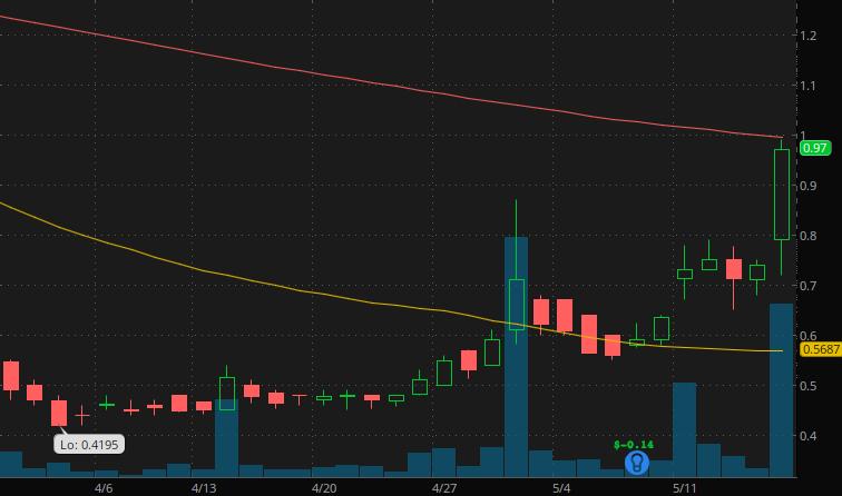 penny stocks under $1 Seelos Therapeutics (SEEL stock)