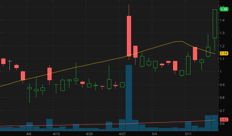 penny stocks under $1 iBio Inc. (IBIO Stock)