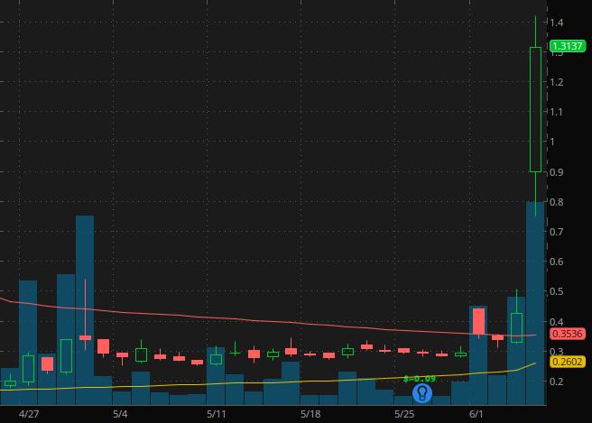 penny stocks on Robinhood WeBull Vislink Technologies (VISL stock chart)