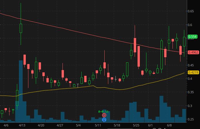 penny stocks to buy Biocept Inc. (BIOC stock chart)