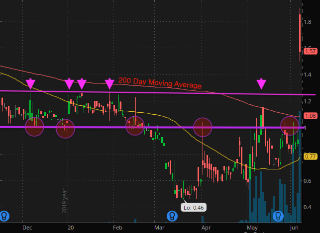 penny-stocks-to-watch-now-Foresight-Autonomous-Holdings-FRSX-stock-report