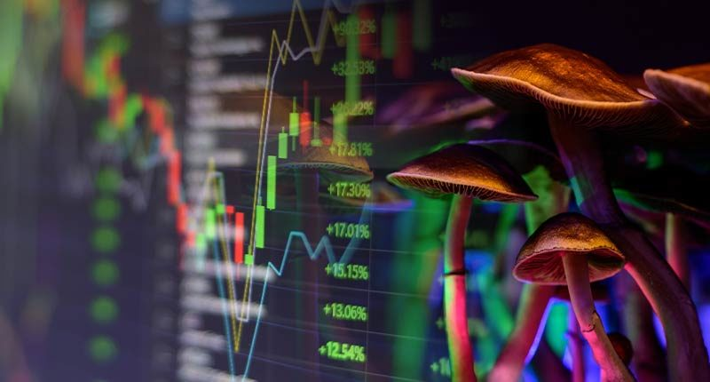 psychedelic penny stocks to watch mushroom stocks
