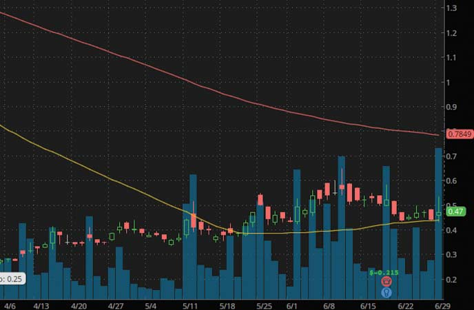 robinhood penny stocks to watch Bionano Genomics (BNGO Stock Chart)