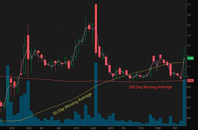 biotech penny stocks to watch Seelos Therapeutics (SEEL stock chart)