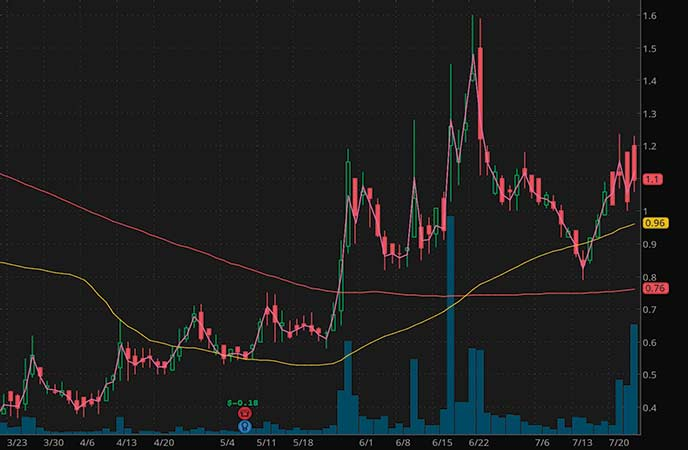 penny stocks to buy coffee Miragen Therapeutics Inc (MGEN stock chart)