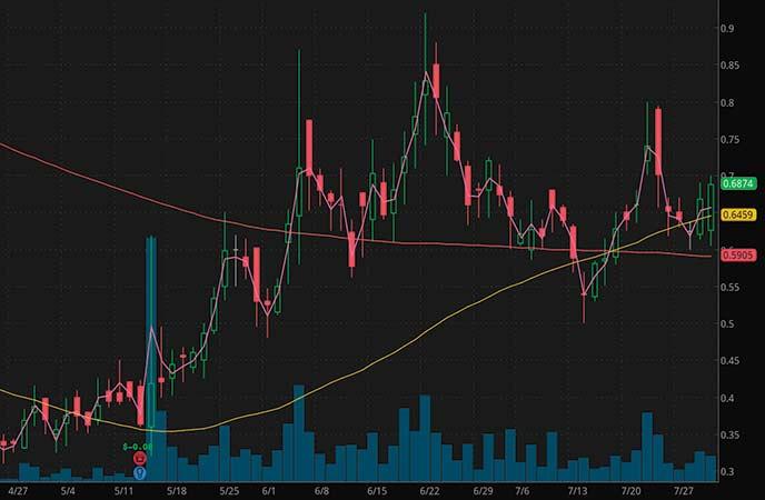 penny stocks to buy sell HTG Molecular Diagnostics Inc. (HTGM stock chart)_