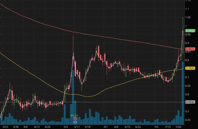 penny stocks to watch Sesen Bio Inc. (SESN stock chart)