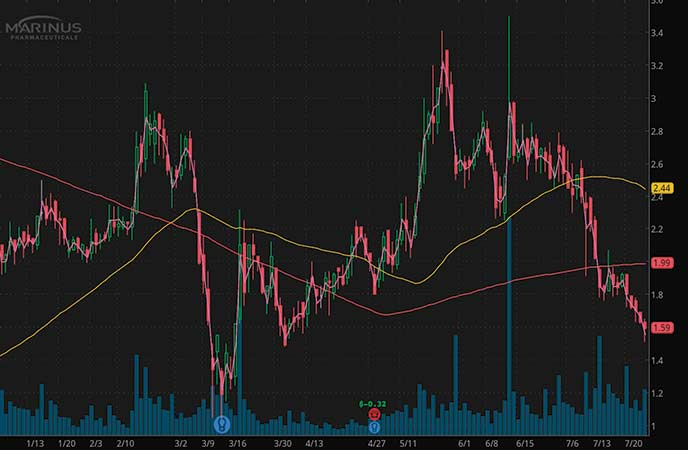 top penny stocks to watch Marinus Pharmaceuticals (MRNS stock chart)