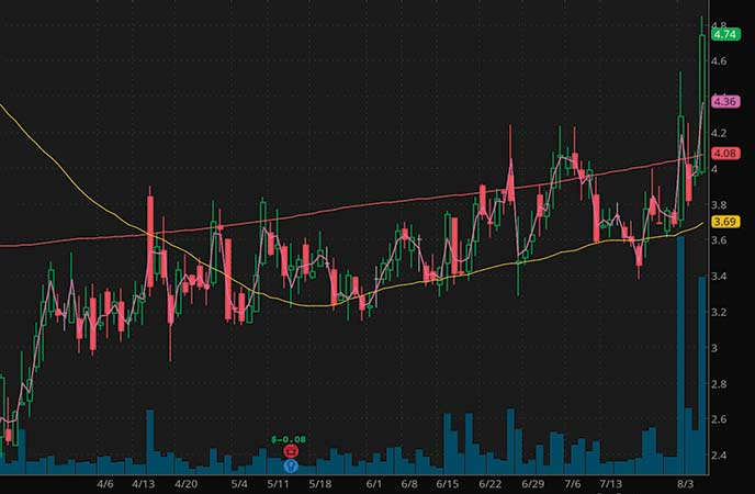 high volume penny stocks Xunlei Limited (XNET stock chart)