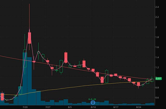 high volume penny stocks to watch Tonix Pharmaceuticals (TNXP stock chart)