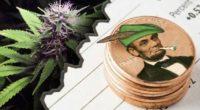 marijuana penny stocks on robinhood