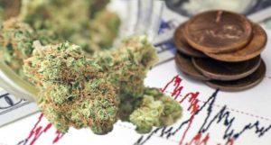marijuana penny stocks to watch trade right now