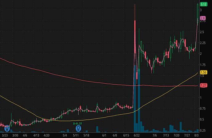 pandemic penny stocks to buy SINTX Technologies (SINT stock chart)
