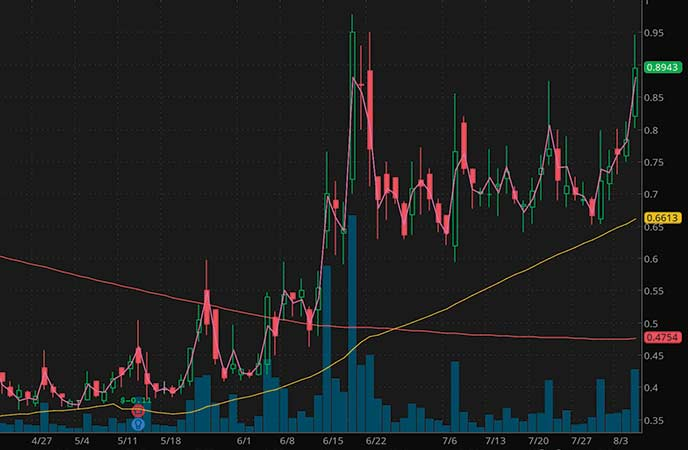 penny stocks on robinhood Biocept Inc. (BIOC stock chart)