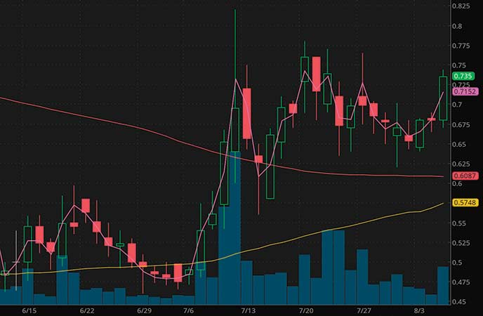 penny stocks on robinhood Jaguar Health Inc. (JAGX stock chart)