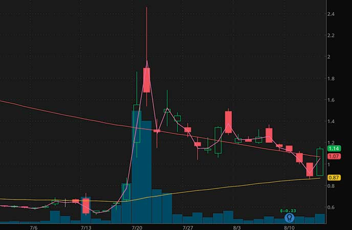penny stocks on robinhood Tonix Pharmaceuticals Holdings Corp. (TNXP stock chart)
