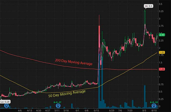 penny stocks on robinhood to watch right now SINTX Technologies (SINT stock chart)
