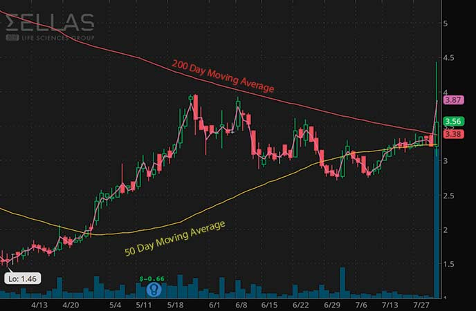 penny stocks to buy analyst forecast SELLAS Life Sciences Group (SLS stock chart)
