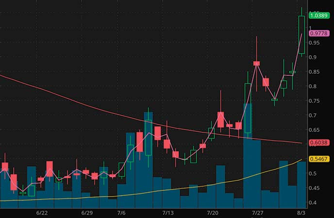 penny stocks to buy under $4 CHF Solutions (CHFS stock chart)