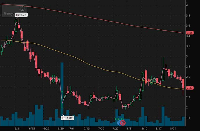 penny stocks to buy under $4 Genworth Holdings Inc. (GNW stock chart)