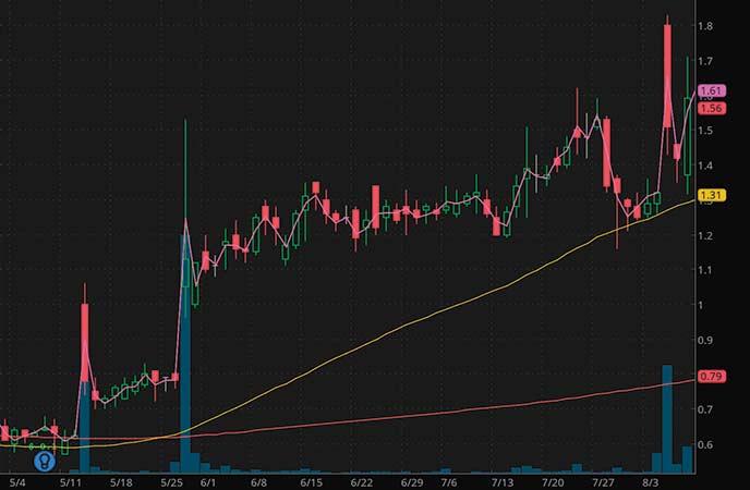 penny stocks to watch Aerpio Pharmaceuticals (ARPO stock chart)