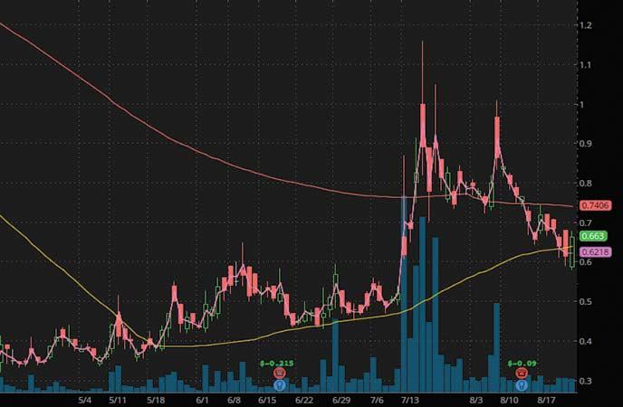 penny stocks to watch Bionano Genomics (BNGO stock chart)