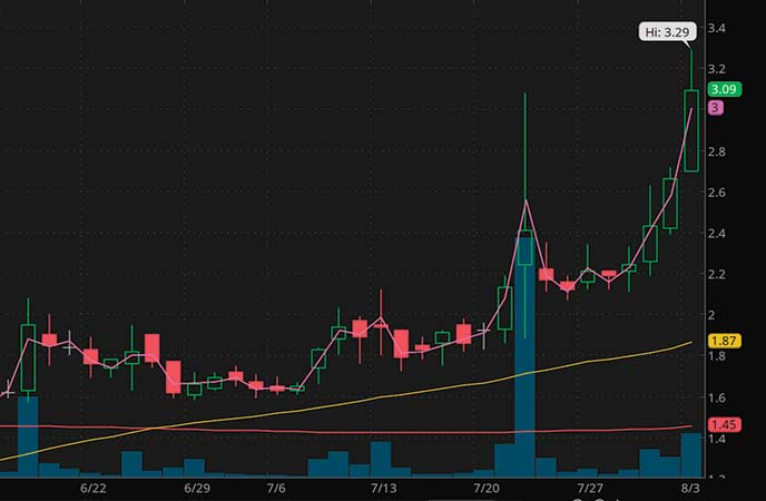 penny stocks to watch Bridgeline Digital Inc. (BLIN stock chart)