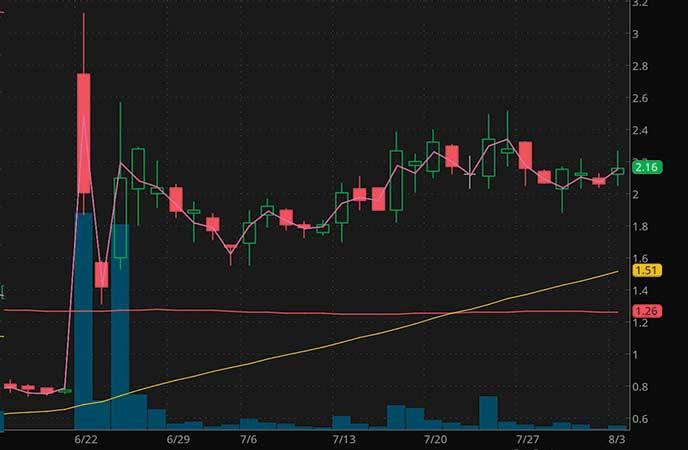 penny stocks to watch SINTX Technologies Inc. (SINT stock chart)