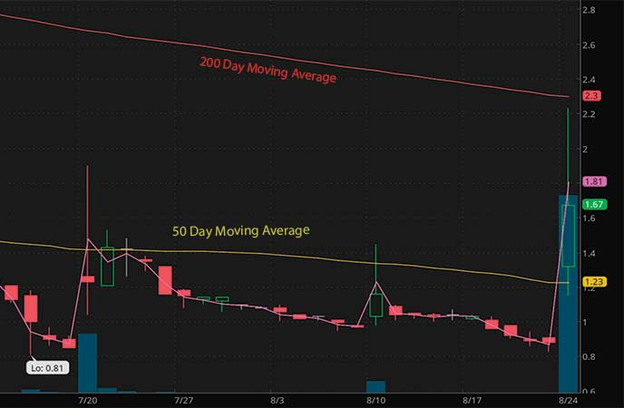 penny stocks to watch august Borqs Technologies Inc. (BRQS stock chart)