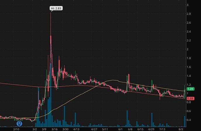 penny stocks to watch iFresh Inc. (IFMK stock chart)