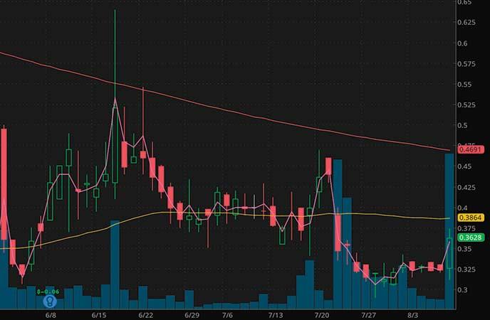 robinhood penny stocks to watch Hancock Jaffe Laboratories (HJLI stock chart)